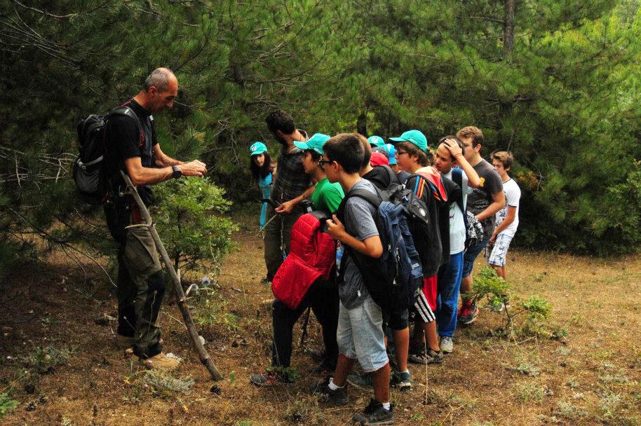 Campwolftrack Yaz Kampı