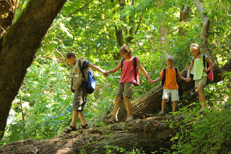 Çocuklar için yaz kampı