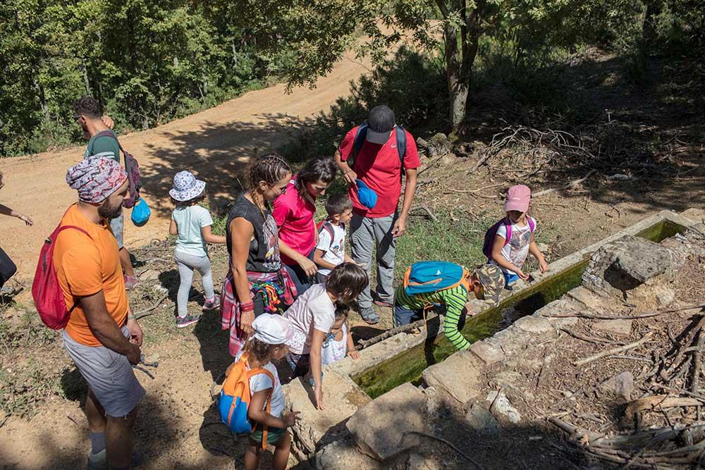 Dikey Dünya Dağ Evi - Çocuk Yaz Kampı